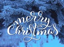 Os ramos de pinheiro cobertos de neve fecham-se acima com Feliz Natal do texto Rotulação da caligrafia Imagem de Stock