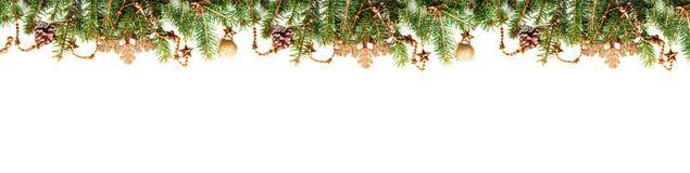 Os ramos do abeto vermelho com decorações douradas em um fundo branco com espaço da cópia fotos de stock