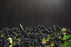Os ramos enegrecem o melanocarpa de Aronia das bagas do chokeberry na tabela escura Autumn Pattern fotos de stock