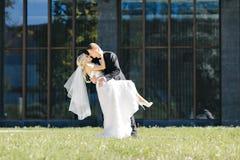 Os recém-casados beijam sob um véu no salgueiro do fundo Foto de Stock