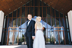 Os recém-casados beijam sob um véu no salgueiro do fundo Fotos de Stock