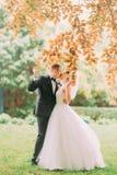 Os recém-casados de beijo no parque do outono Vista completo foto de stock