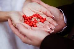 Os recém-casados guardam as alianças de casamento e bagas vermelhas nas palmas de suas mãos fotografia de stock