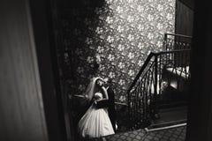 Os recém-casados impressionantes abraçam nas escadas com olhos fechados Foto de Stock Royalty Free