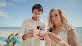 Os recém-casados, noivo e noiva, junto em suas mãos são borboletas belamente pintadas Um fabuloso e mágico vídeos de arquivo
