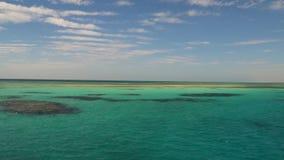 Os recifes nas águas de turquesa do Mar Vermelho vídeos de arquivo