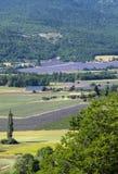 Os retalhos do ` s do fazendeiro colocam no vale abaixo de Sault, Provence imagens de stock