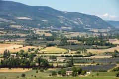 Os retalhos do ` s do fazendeiro colocam no vale abaixo de Sault, Provence França fotos de stock royalty free