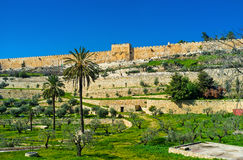 Os rramparts do Jerusalém fotografia de stock royalty free