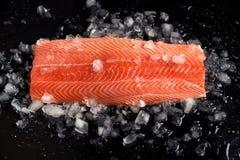 Os salmões crus enfaixam o todo no gelo lascado sobre o fundo preto Nutrição dietética Peixes vermelhos imagens de stock royalty free