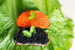 Os sanduíches com o caviar vermelho e preto na alface saem foto de stock