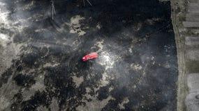 Os sapadores-bombeiros extinguem um fogo na floresta pela inundação da água imagens de stock royalty free