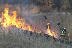 Os sapadores-bombeiros lutam um incêndio violento na mola Foto de Stock