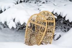 Os sapatos de neve da pata de urso do vintage enfeitam a neve da árvore Foto de Stock Royalty Free