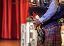 Os Scottish musicien bagpiper2 Foto de Stock Royalty Free