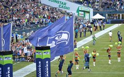 Os Seattle Seahawks tomam o campo Fotos de Stock Royalty Free