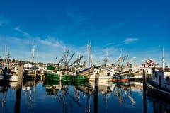 Os seiners de bolsa amarraram no terminal do ` s do pescador em Seattle Washington foto de stock
