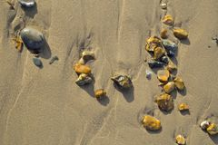 Os seixos pequenos sairam pela maré em um fundo da textura do Sandy Beach Foto de Stock Royalty Free