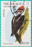 Os selos postais tinham sido imprimidos em Nicarágua Foto de Stock