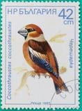 Os selos postais tinham sido imprimidos na Federação Russa Imagem de Stock