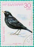 Os selos postais tinham sido imprimidos na Federação Russa Imagens de Stock