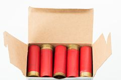 Os shell de espingarda do calibre do vermelho 12 carregaram em uma caixa de cartão Fotografia de Stock Royalty Free