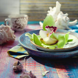 Os shell do mar e uma orquídea verde florescem, decorações bonitas imagens de stock