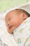 Os sonos recém-nascidos Imagens de Stock Royalty Free