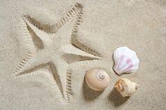 Os starfish da areia da praia imprimem escudos Fotografia de Stock Royalty Free