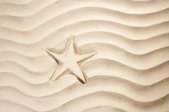 Os starfish da praia imprimem o verão do Cararibe branco da areia Foto de Stock