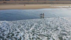 Os surfistas entram na água no alvorecer em Califórnia filme
