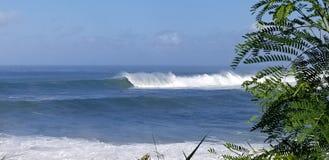 Os surfistas surfam um grande inchamento do inverno na baía de Weimea em Oahu Havaí fotos de stock royalty free