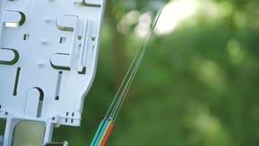 Os técnicos estão instalando a fibra ótica com cintas plásticas Imagens de Stock Royalty Free
