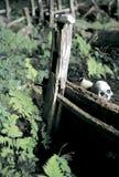 Os túmulos de Hmong na caverna Foto de Stock