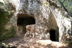 Os túmulos graves nas madeiras aproximam Populonia, Italia imagem de stock royalty free