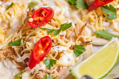 Os tacos saborosos fecham-se acima Foto de Stock Royalty Free
