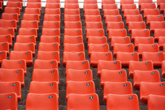 Os tamboretes da laranja no gym Imagem de Stock