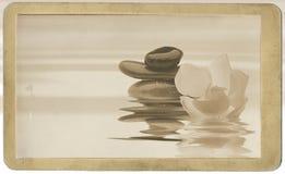 Os termas de relaxamento com água e as flores efetuam o vintage fotografia de stock