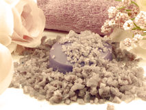 Os termas de sal do mar e a alfazema do sabão scent no fundo branco imagens de stock