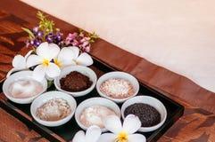Os termas tailandeses esfregam o ingrediente do tratamento, sésamo, farinha de aveia, sal, coff fotografia de stock royalty free