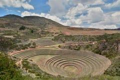Os terraços agrícolas Incan moray Vale sagrado Região de Cusco peru Imagem de Stock Royalty Free