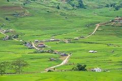 Os terraços do arroz colocam na estação de Rainning em Tule Fotografia de Stock