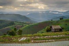 Os terraços do arroz do Pa Pong Piang da proibição colocam na província de Chiangmai de Tailândia fotos de stock