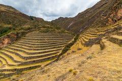 Os terraços do Inca em Pisac, vale sagrado, Peru fotografia de stock royalty free