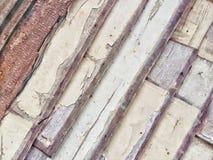 Os testes padrões e as texturas dos painéis de madeira são marrons fotos de stock
