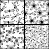 Os testes padrões sem emenda elegantes preto e branco das flores, das borboletas e das libélulas das folhas ajustam-se, vector ilustração royalty free