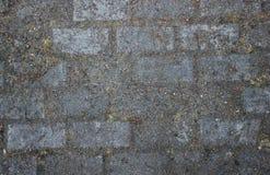 Os tijolos alinharam o trajeto Fotografia de Stock Royalty Free