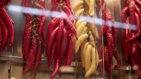 Os tipos diferentes de pimentas de pimentão picantes estão pendurando na parede no mercado, close-up vídeos de arquivo