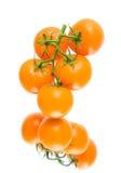 Os tomates alaranjados frescos na água deixam cair em um fundo branco com Imagem de Stock