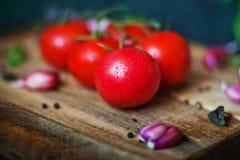 Os tomates bonitos suculentos maduros com água deixam cair em um close-up escuro do fundo Textura natural dos vegetais e dos verd foto de stock